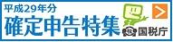 http://www.nta.go.jp/tetsuzuki/shinkoku/shotoku/tokushu/index.htm